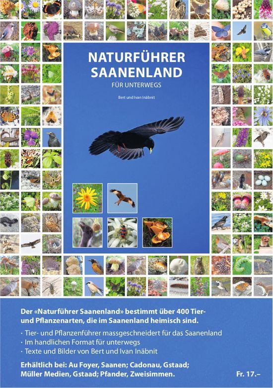 Naturführer Saanenland für Unterwegs