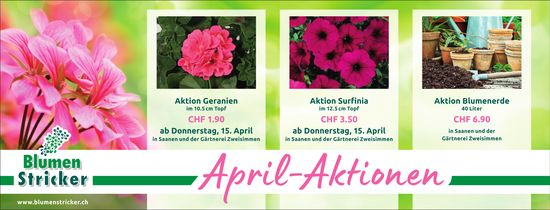 Blumen Stricker, Saanen - April-Aktionen