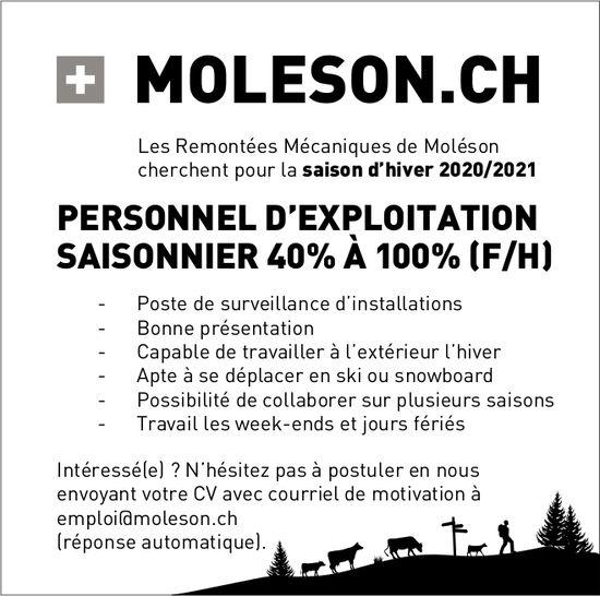 PERSONNEL D'EXPLOITATION SAISONNIER 40% À 100% (F/H), Les Remontées Mécaniques de Moléson, recherché