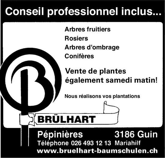BRÜLHART, Guin, Pépinières conseil professionnel inclus