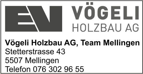Vöceli Holzbau AG, Team Mellingen