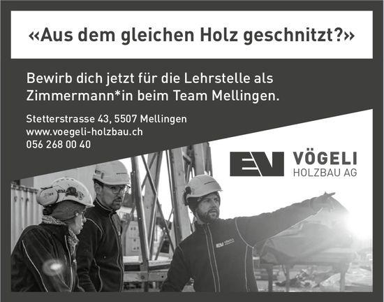Lehrstelle als Zimmermann*in, Vögeli Holzbau AG, Mellingen, zu vergeben