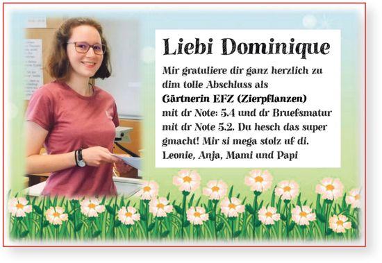 Liebi Dominique, Mir gratuliere dir ganz herzlich zu dim tolle Abschluss