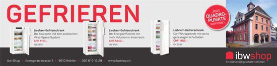 Ibw shop, Wohlen - Gefrieren