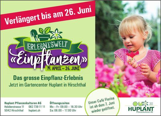 """Erlebniswelt """"Einpflanzen"""", bis 26. Juni, Huplant Pflanzenkulturen AG, Hirschthal"""