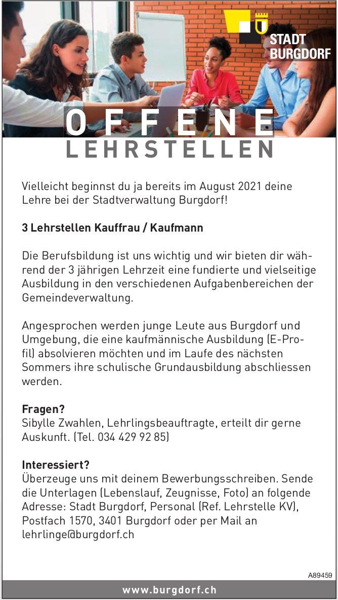3 Lehrstellen Kauffrau / Kaufmann, Stadtverwaltung Burgdorf, zu vergeben