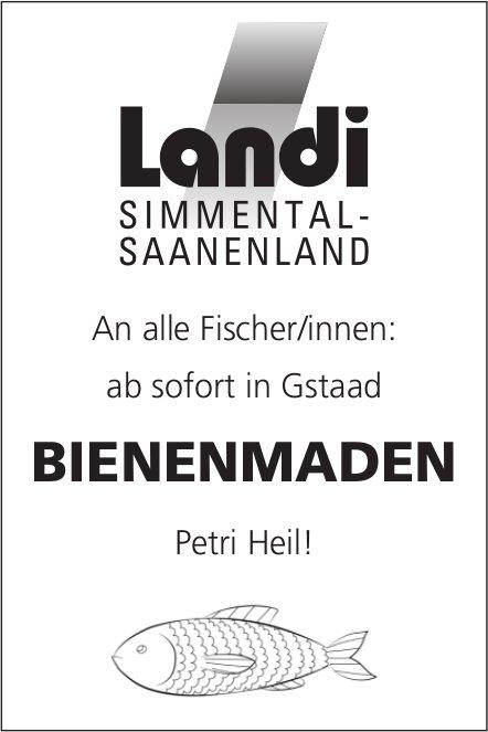 An alle Fischer/innen: ab sofort in Gstaad: Bienenmaden - Petri Heil!