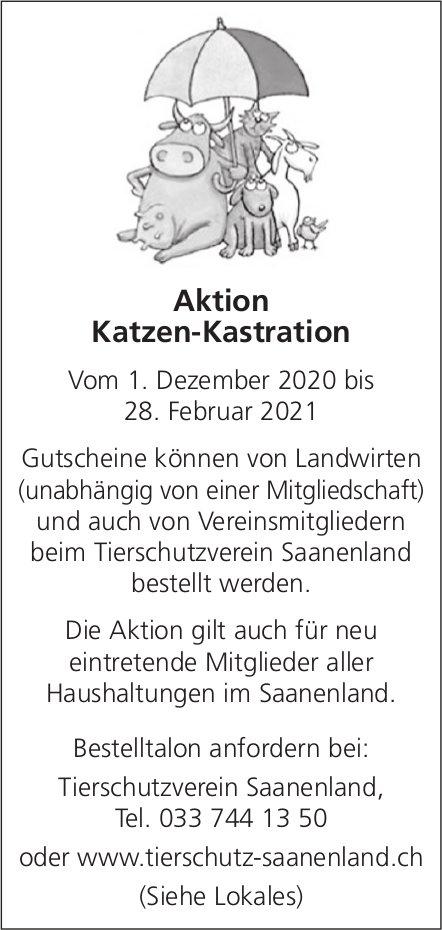 Aktion Katzen-Kastration, 1. Dezember + 28. Februar 2021, Tierschutzverein, Saanenland