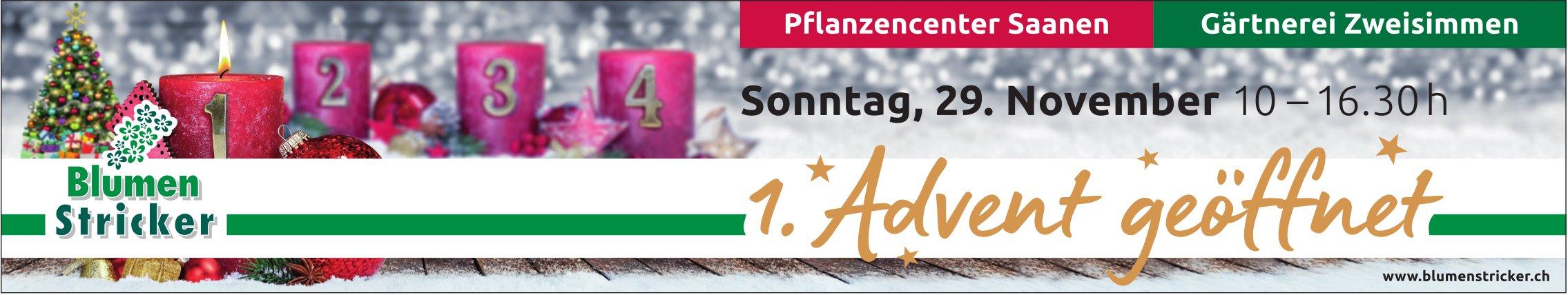Blumen Stricker, Saanen & Zweisimmen - 1. Advent, 29. November, geöffnet