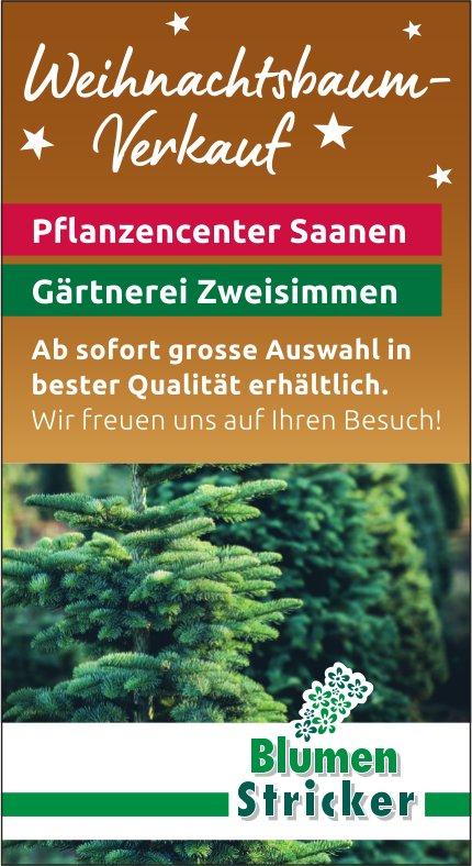 Blumen Stricker -  Weihnachtsbaum-Verkauf, Pflanzencenter Saanen & Gärtnerei Zweisimmen
