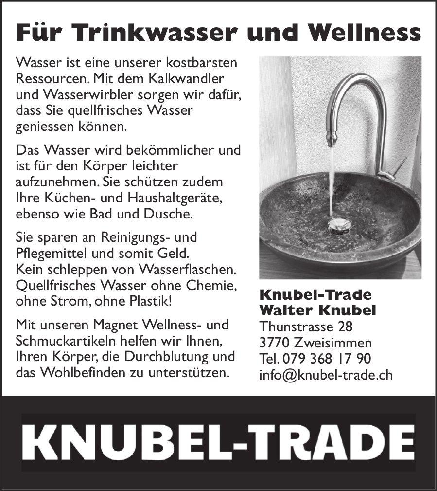 Knubel-Trade, Walter Knubel, Zweisimmen - Für Trinkwasser und Wellness