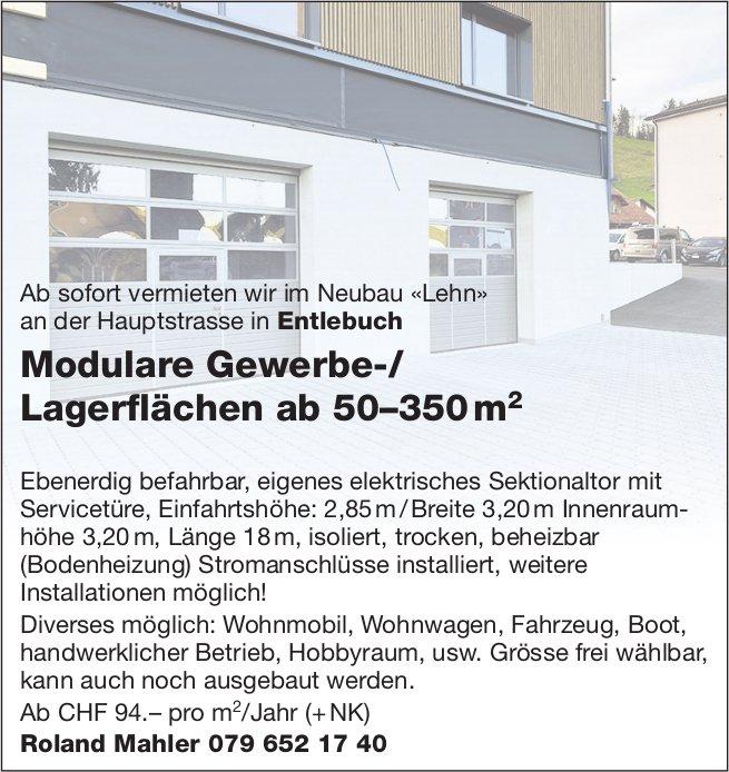 Modulare Gewerbe-/ Lagerflächen ab 50–350m², Entlebuch, zu vermieten