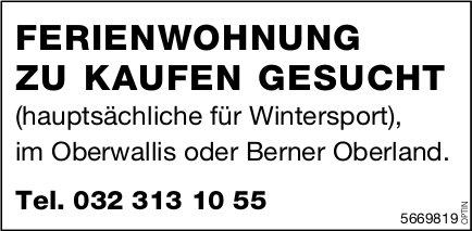 Ferienwohnung, Oberwallis oder Berner Oberland, zu kaufen gesucht