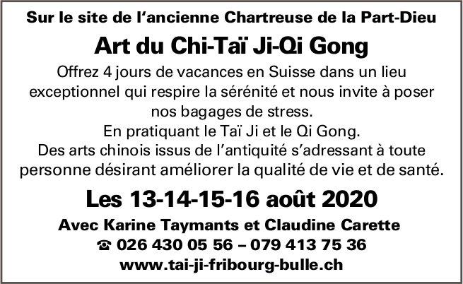 Art du Chi-taï Ji-qi Gong, 14-14-15-16 août, Bulle