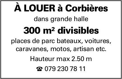 300 m2 divisibles, Corbières, à louer