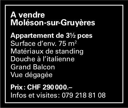 Appartement, 3½ pièces, Moléson-sur-Gruyères, à vendre