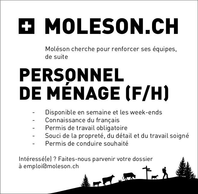 PERSONNEL DE MÉNAGE (F/H), Moleson, recherché