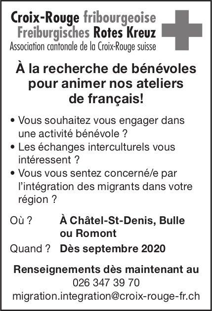 Bénévoles pour animer nos ateliers de français, Croix-Rouge fribourgeoise, Châtel-St-Denis