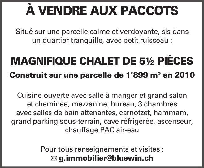Magnifique Chalet de 5½ Pièces, Paccots, à vendre