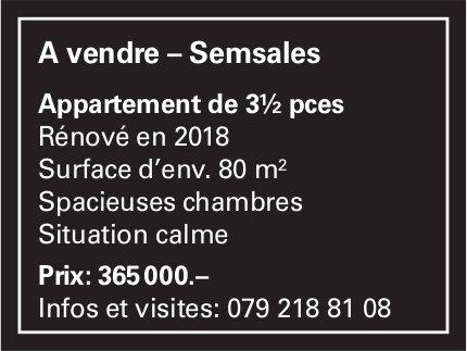 Appartement, 3½ pièces, Semsales, à vendre
