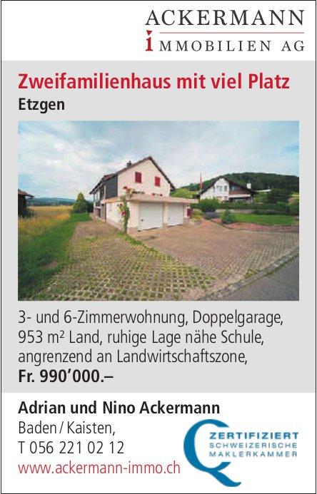 Zweifamilienhaus, 3- und 6-Zimmerwohnung, Etzgen, zu verkaufen