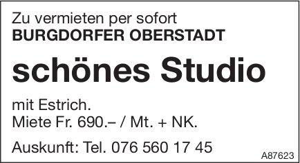 Schönes Studio, Burgdorfer Oberstadt , zu vermieten