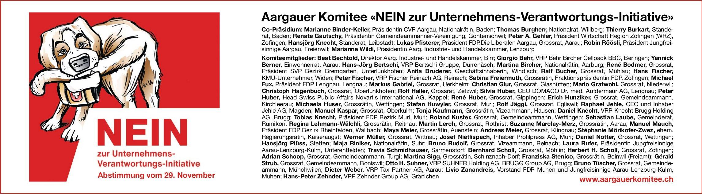 Aargauer Komitee, NEIN zur Unternehmens-Verantwortungs-Initiative