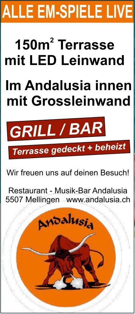 Restaurant Musik-Bar Andalusia, Mellingen - Alle EM-Spiele live