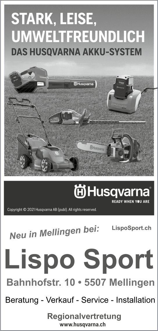 Lispo Sport, Mellingen - Stark, leise,  umweltfreundlich
