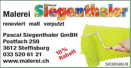 Malerei Pascal Siegenthaler - Renoviert,  malt, verputzt / 10% Rabatt