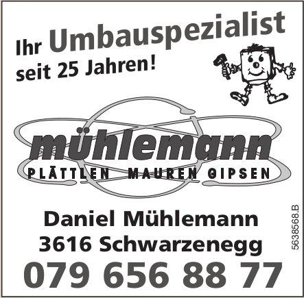 Daniel Mühlemann,  Schwarzenegg - Ihr Umbauspezialist seit 25 Jahren!