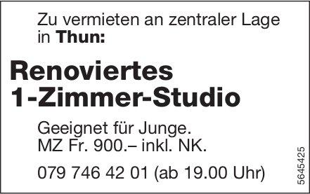 Renoviertes 1-Zimmer-Studio, Thun, zu vermieten
