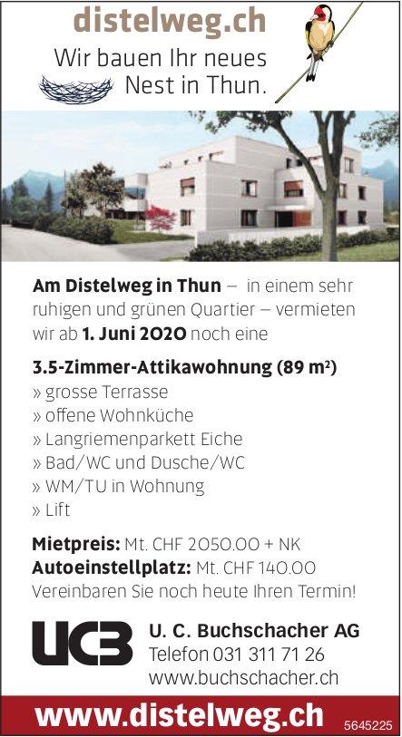 3.5-Zimmer-Attikawohnung (89 m2), Thun, zu vermieten