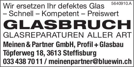 Glasbruch, Glasreparaturen aller Art, Steffisburg - Wir ersetzen Ihr defektes Glas