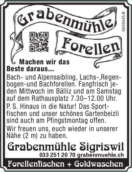 Grabenmühle Sigriswil, Sigriswil - Machen wir das Beste daraus...