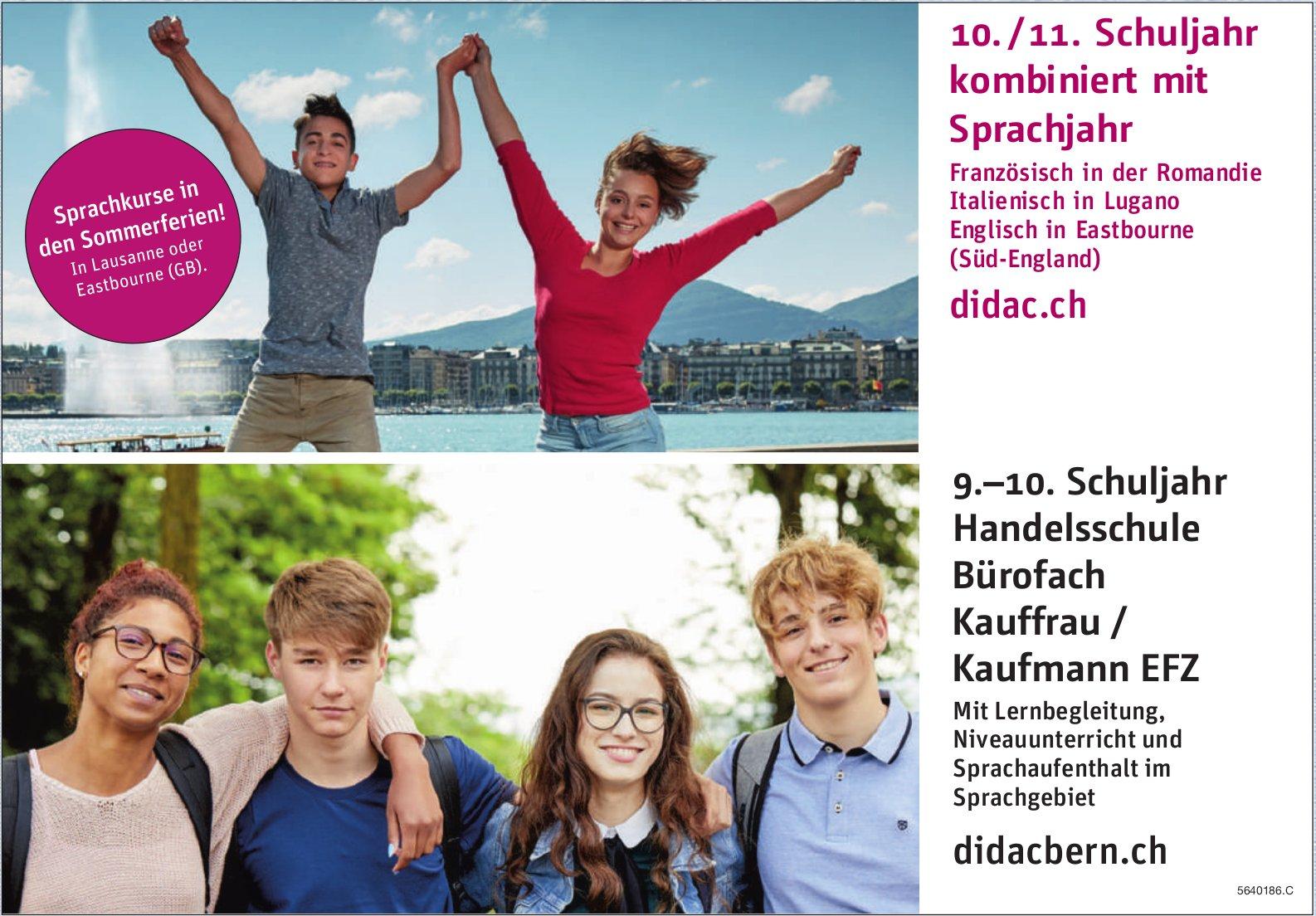 Didac Bern - 10. /11. Schuljahr kombiniert mit Sprachjahr
