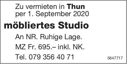 Möbliertes Studio, Thun, zu vermieten
