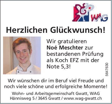 Wohn- und Arbeitsgemeinschaft Gwatt, WAG - Herzlichen Glückwunsch! Noé Meschter