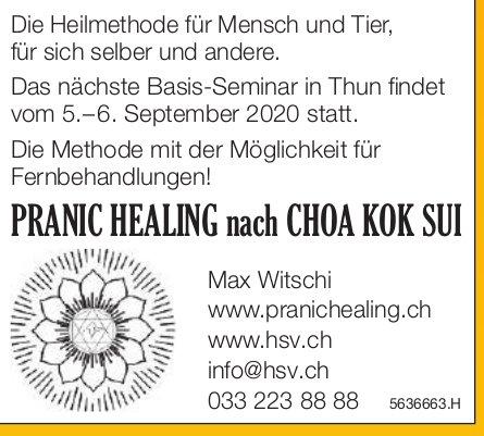 Pranic Healing nach Choa Kok Sui