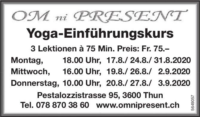 Yoga-Einführungskurs, ab 17. August, OM ni PRESENT, Thun