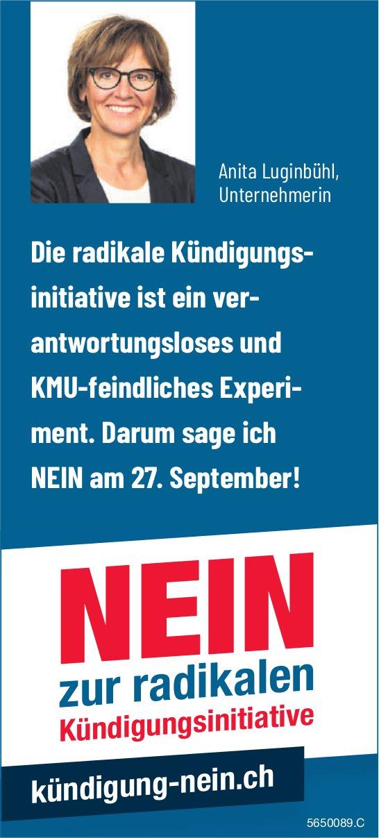 Anita Luginbühl,  Unternehmerin: NEIN zur radikalen Kündigungsinitiative