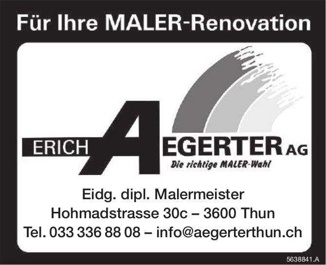 Erich Aegerter AG, Thun - Für Ihre Maler-Renovation