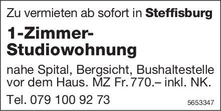 1-Zimmer- Studiowohnung, Steffisburg, zu vermieten