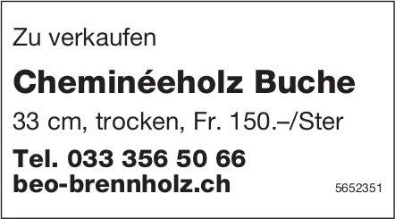 Beo Brennholz, Cheminéeholz Buche zu verkaufen
