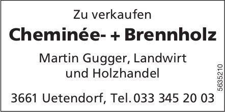 Martin Gugger, Uetendorf - Cheminée- + Brennholz laufend zu verkaufen