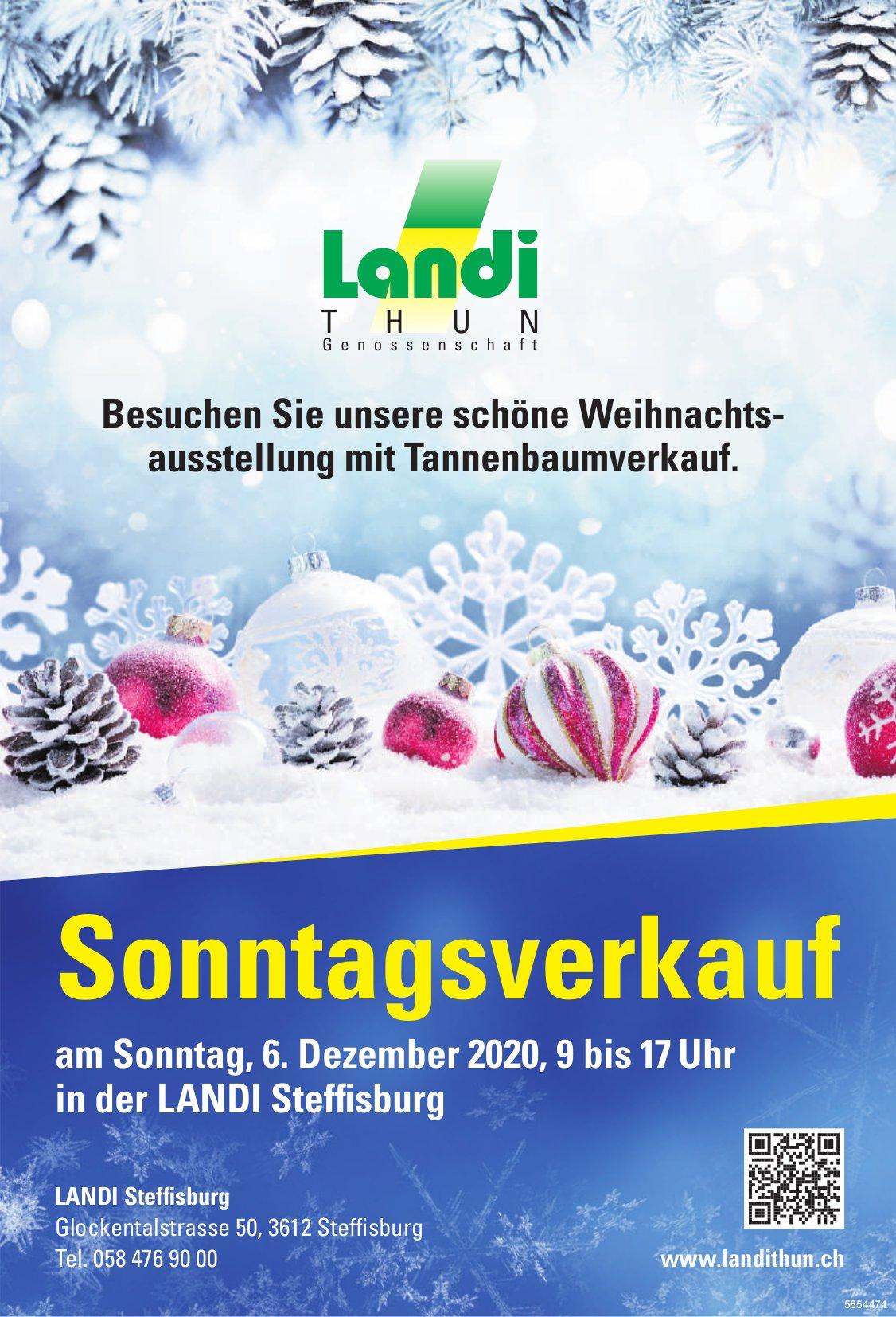 Landi Steffisburg - Sonntagsverkauf, 6. Dezember