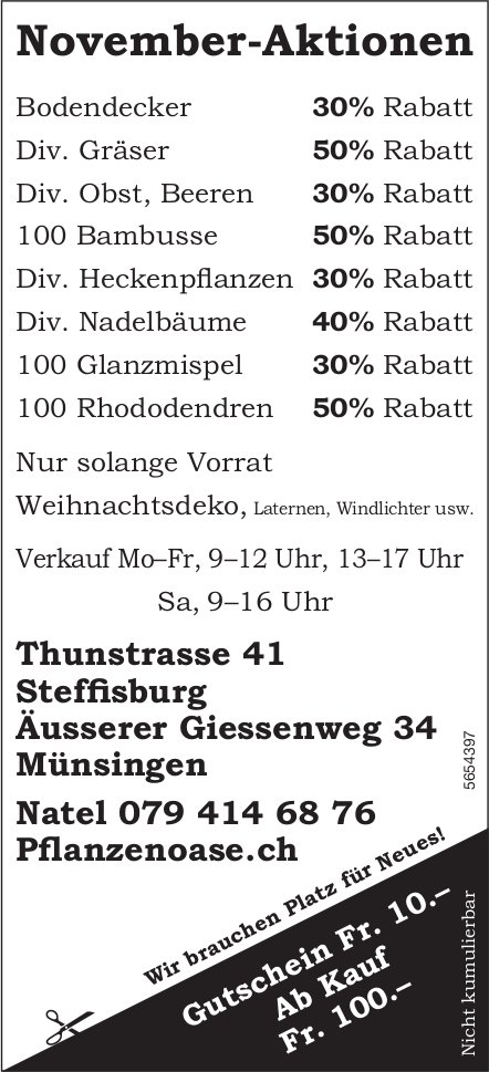 Pflanzenoase, Münsingen - November-Aktionen