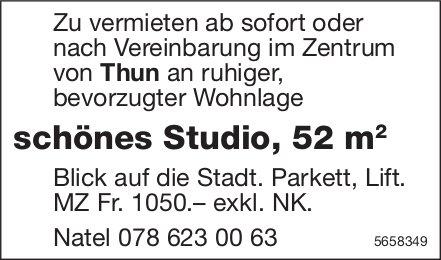 Schönes Studio, 52 m, Thun, zu vermieten