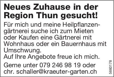 Neues Zuhause in der Region Thun gesucht!,