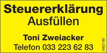 Toni Zweiacker, Steuererklärung Ausfüllen